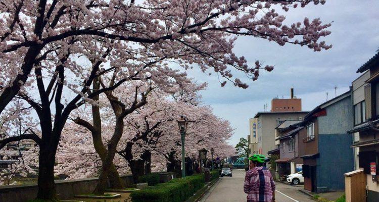 Japan by bike